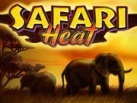 Safari_Heat_137х103