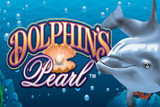 dolphins-pearl-320